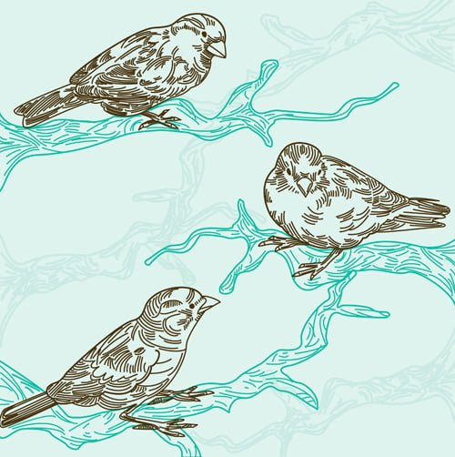 Birds on branches illustration