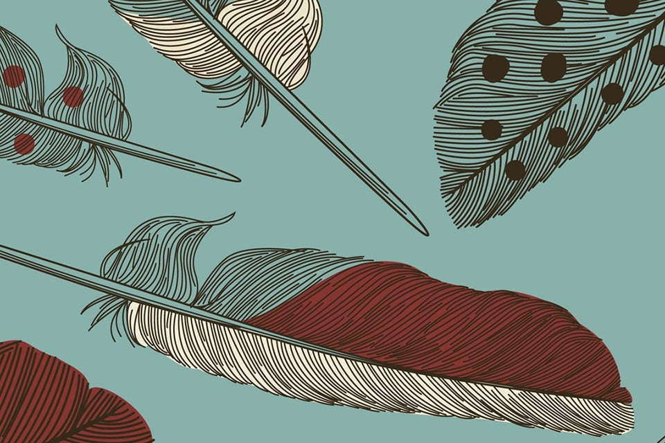feather pattern illustration