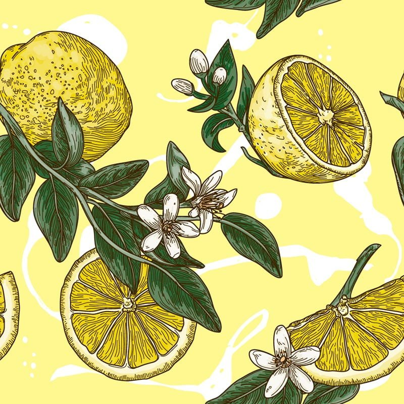 lemon pattern illustration