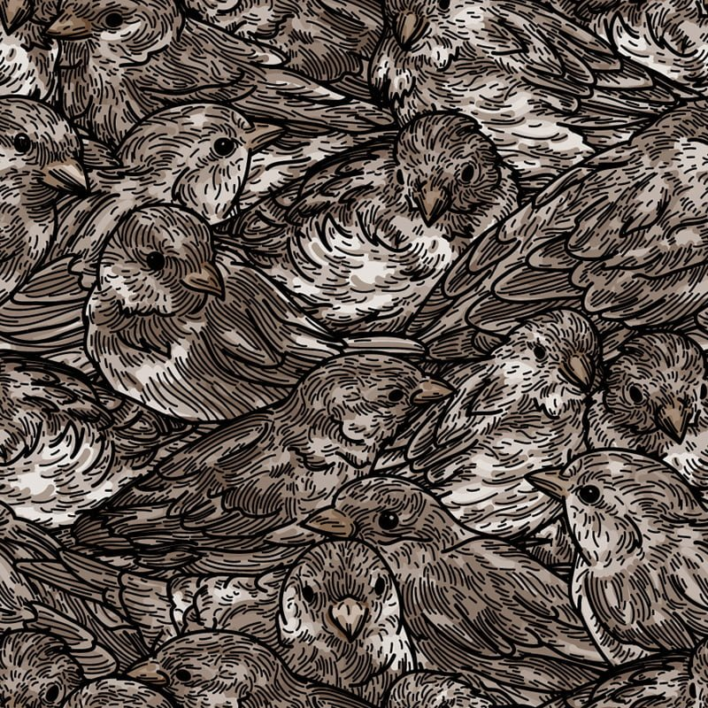 Sparrow pattern illustration