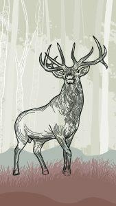 Standing elk in front of fo