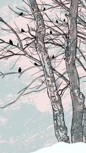 Trees in winter with birds